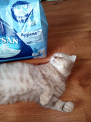 Catsan наполнитель для кошек минеральный впитывающий гигиенический 10 л #14, Светлана