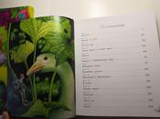 Чудесное путешествие Нильса с дикими гусями #16, Екатерина Ч.