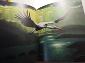 Чудесное путешествие Нильса с дикими гусями #19, Екатерина Ч.