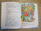 Рассказы Люси Синицыной, ученицы третьего класса #9, Галина
