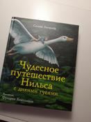 Чудесное путешествие Нильса с дикими гусями #15, Екатерина Ч.