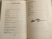 Чудесное путешествие Нильса с дикими гусями #87, Ольга Б.