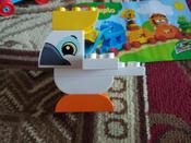 Конструктор LEGO DUPLO Creative Play 10863 Мой первый парад животных #8, Кралинина Анастасия Олеговна