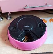"""Автоматическая кормушка """"Feed-Ex"""", на 6 кормлений, цвет: розовый #1, Беляева Анна"""