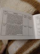 Штрафы и другие санкции для водителей, пассажиров и пешеходов (с изменениями и дополнениями на 2019 год) | Нет автора #8, Наталия