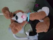 FurReal Friends Интерактивная игрушка Говорящий щенок #8, Ольга