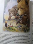 Чудесное путешествие Нильса с дикими гусями #101, Галина Г.