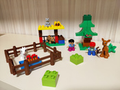 Конструктор LEGO DUPLO 10582 Лесные животные #1, Маргарита