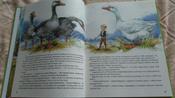 Чудесное путешествие Нильса с дикими гусями #5, Ксения