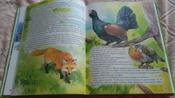 Чудесное путешествие Нильса с дикими гусями #6, Ксения