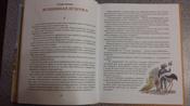 Чудесное путешествие Нильса с дикими гусями #59, Помылева Анастасия