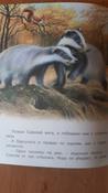 Непослушные барсучата   Гурина Ирина Валерьевна #115, Мария Ф.