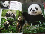 Моя большая книга о животных   Куйе Наталья #2, Анастасия