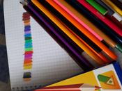 """Карандаши цветные Berlingo """"Жил-был кот"""", 24 цвета, (279650) #15, Екатерина Танасиенко"""