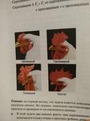 Основы генетики #2, Сергей В.