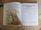 Сказки дядюшки Римуса | Нет автора #7, Алена