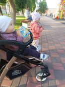 Фрутоняня пюре яблоко, черника печенье с 6 месяцев, 90 г #120, Екатерина Н.