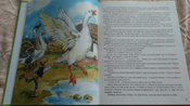 Чудесное путешествие Нильса с дикими гусями #4, Ксения