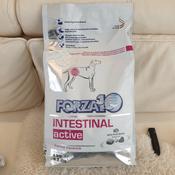 """Корм сухой Forza10 """"Active Line"""" для взрослых собак всех пород при проблемах пищеварения, 4 кг #7, Влада"""