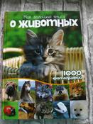Моя большая книга о животных   Куйе Наталья #5, Анастасия